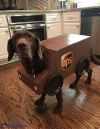 UPS Package Car and Driver Dogs Costume - Photo 2/3