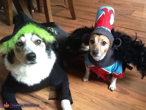 Wicked Witch and Flying Monkey Dogs Costumes