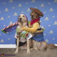Woody & Buzz Dogs Costume