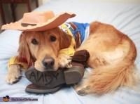 Woody & Buzz Dogs Costume - Photo 2/2