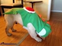 Yoshi Dog Costume