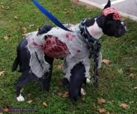 Zombie Dog Costume - Photo 4/5