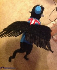 Flying Monkey Costume for Dogs - Photo 3/3