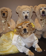 Homemade Costumes for Pets - Costume Works (page 3/50)