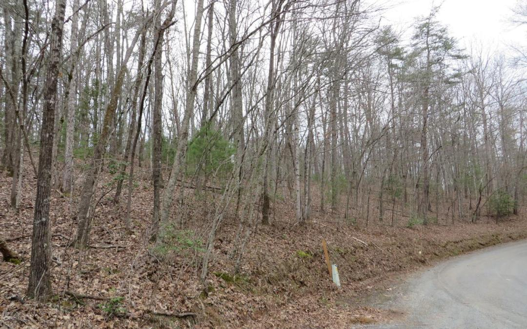 This well appointed, gentle laying, unrestricted 3.23 acre tract, offers a great gentle ridge that runs across the entire top of the property for maximum privacy, in addition to seasonal mountain views. The property has 400+ feet of road frontage with easy access off a county paved road and beautiful mountain laurel & hardwoods. The acreage is easy to access, view & walk. This is a really a pretty property and great opportunity to own your little piece of heaven in the North Georgia Blue Ridge Mountains. (Additional 3 acres is available)