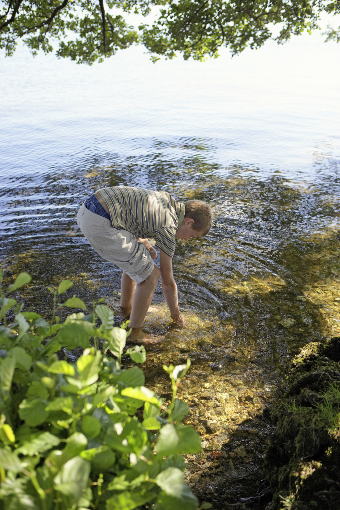 Does Dissolved Oxygen Concentration Affect Activity Level Of Freshwater Invertebrates