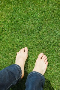 Epson Salt & Lawn Care | Home Guides | SF Gate