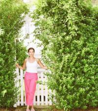 Shrubs That Make a Good Fence | Home Guides | SF Gate