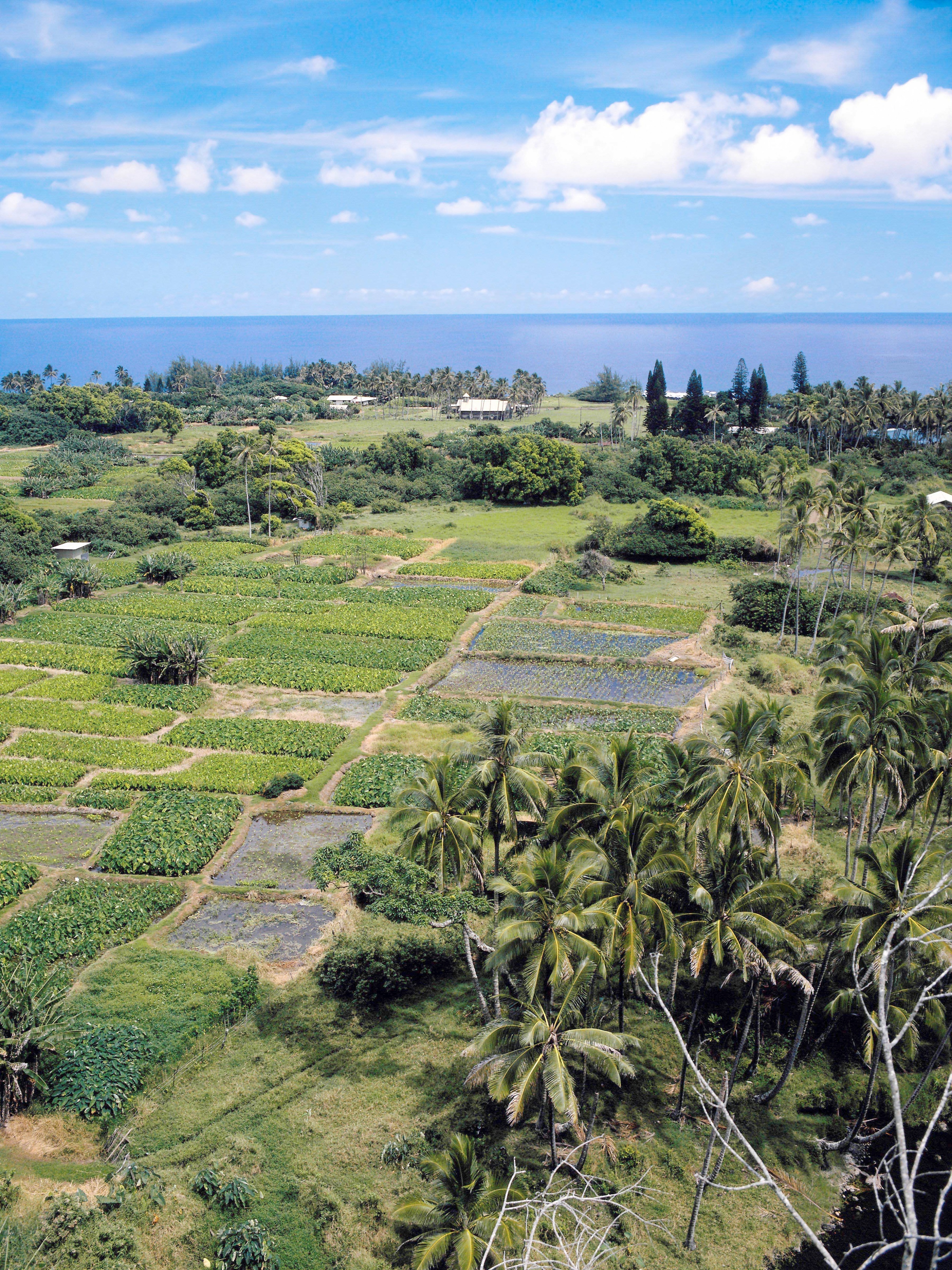 List Of Hawaii S Natural Resources