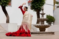 How to Make a Fancy Dance Shawl | Synonym