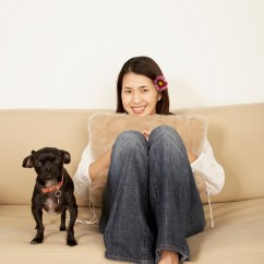 Cat Urine On Sofa Cushion Clearance Covers What To Use Clean Dog Out Of Upholstery Animals