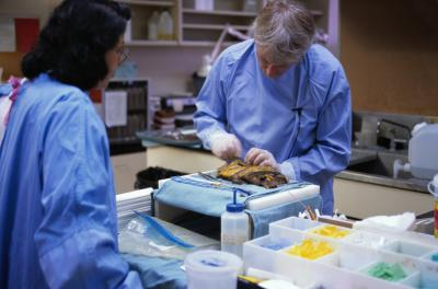 What Courses Must a Medical Examiner Take in College  Our Everyday Life