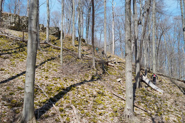 Probably one of the steepest climbs uphill for this section of the trail.