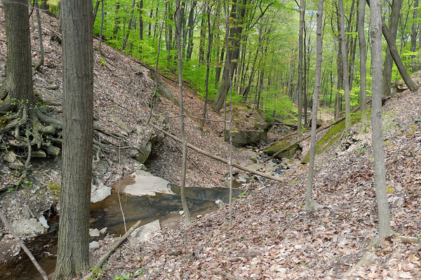 Lots of creeks and waterfalls along this section of the Bruce Trail