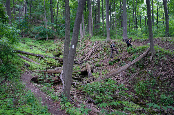 Everything looks so different from the time we hiked in the spring.  Less muddy and darker greens.