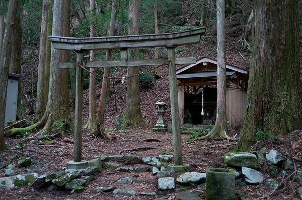 Stopping by to take a look at this shrine in the middle of the forest.  Trying not to get eaten alive by mosquitoes.
