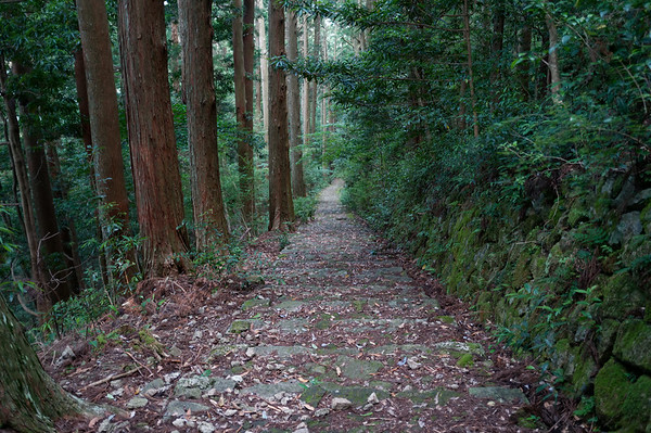 The final set of steps into Nachi-san!
