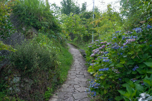A small path leading out of the village of Takahara.