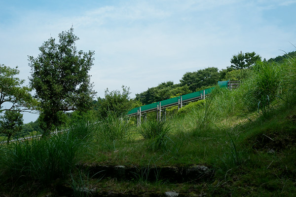 Perhaps they should have made this giant slide part of the Kumano Kodo. Make this part of the hike even more exciting!