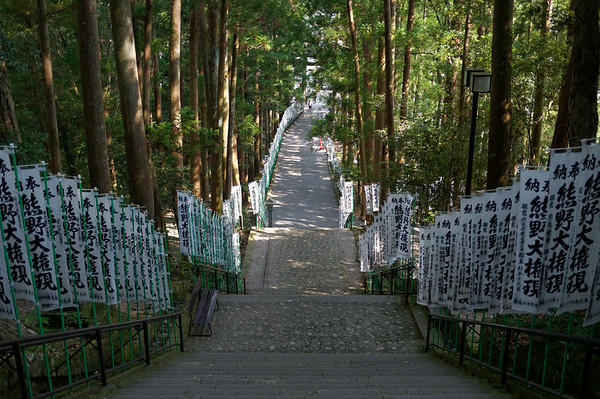 The stairs down from the Kumano Hongu Taisha Grand Shrine.