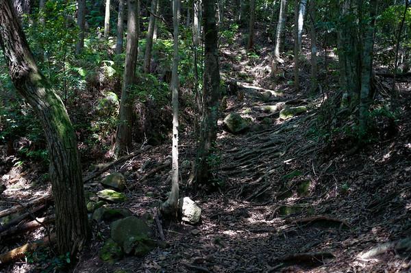 The steep climb up from Takijiri.