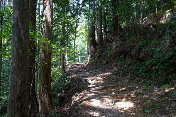 The long-awaited arrival at Hosshinmon-oji.  I had initially thought that the trek would be easier once I passed this point but little did I realize the trek would hold more obstacles and challenges for me ahead!