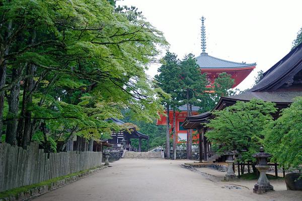 Walking towards Danjogaran Koyasan