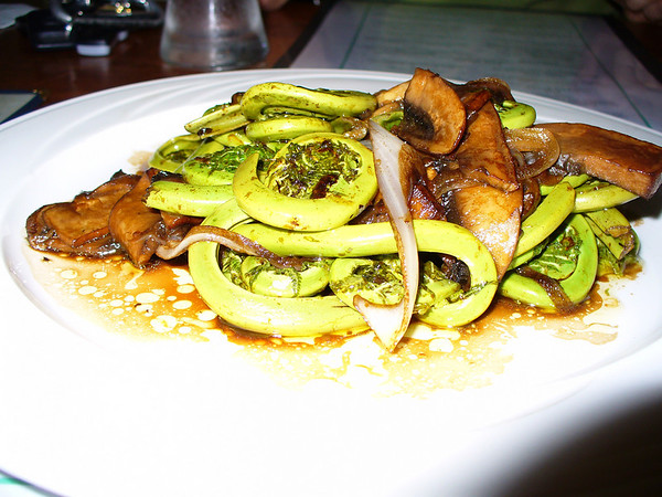 fiddleheads... apparently a delicacy in the spring... who knew?