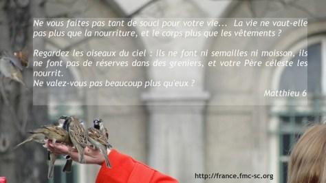 Mt.6.Pas_de_souci.net