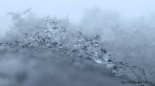 2018_lombreuil_neige (21)
