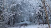 2018_lombreuil_neige (8)