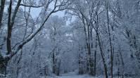 2018_lombreuil_neige (9)