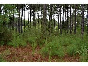 27 ACRES-LOTS OF ROAD FRONTAGE! THIS NICE WOODED TRACT HAS LOTS OF ROAD FRONTAGE, A SECLUDED POND, AND ELECTRICITY IS ON THE PROPERTY. A WATER CONNECTION IS AVAILABLE AT THE ROAD. THIS WOULD MAKE A GREAT PERMANENT HOME SITE OR WEEKEND GET-A-WAY! OWNER WILL CONSIDER DIVIDING.