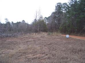 GREAT SIZE PROPERTY FOR COUNTRY LIVING! This 19.8 acre property has rolling terrain with good road frontage. The owner reports lots of wildlife and good deer hunting. This property is priced to sell! Call us today to take a look.