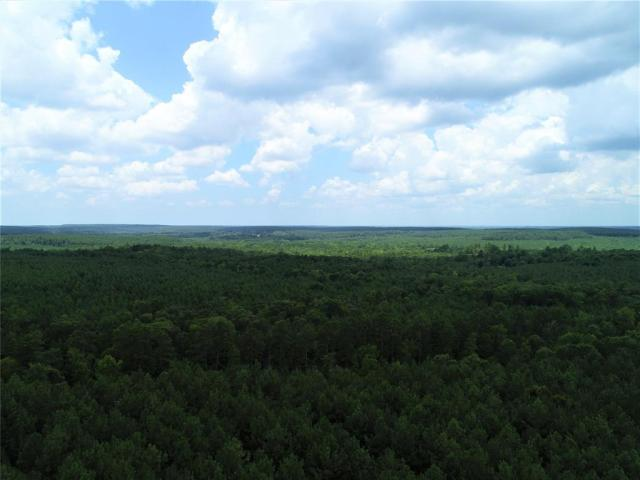TIMBER TRACT ADJACENT TO THE NATIONAL FOREST!   This 125.53 acre tract is planted in 20-year old pine plantation and joins the US Government National Forest. The property has good highway frontage on Highway 227 and great access. There is a creek and lots of wildlife. The owner reports excellent deer and hog hunting. Call today to view this property!