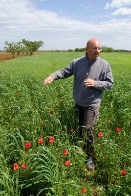 Torre Guaceto reserve farming