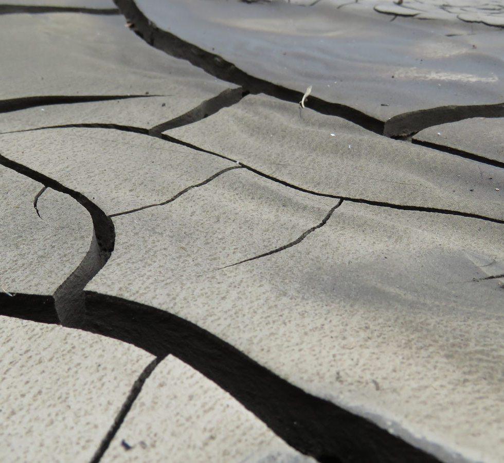 Cracks in dry mud