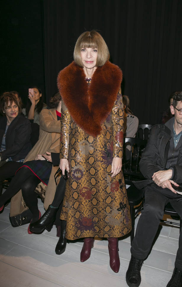 Anna Wintour gossip latest news photos and video