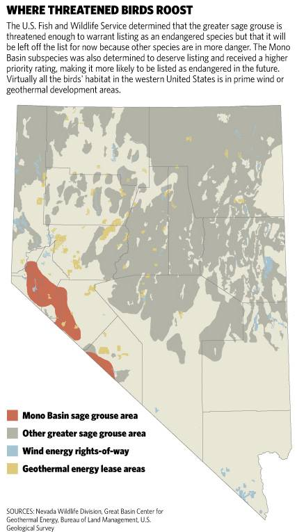 Sage grouse habitat threatened by deveolopment, in Nevada - Las Vega Sun graphic