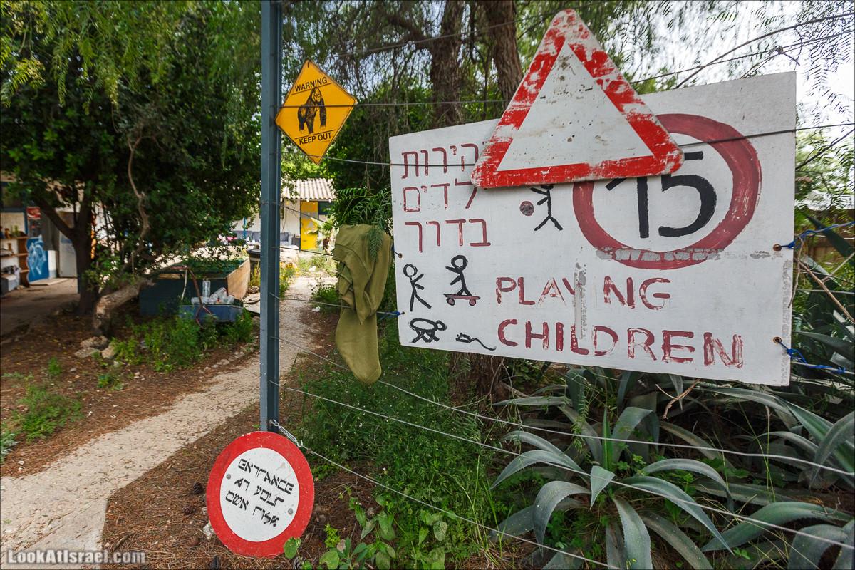 Христианский кибуц Нес Амим | LookAtIsrael.com - Фото путешествия по Израилю