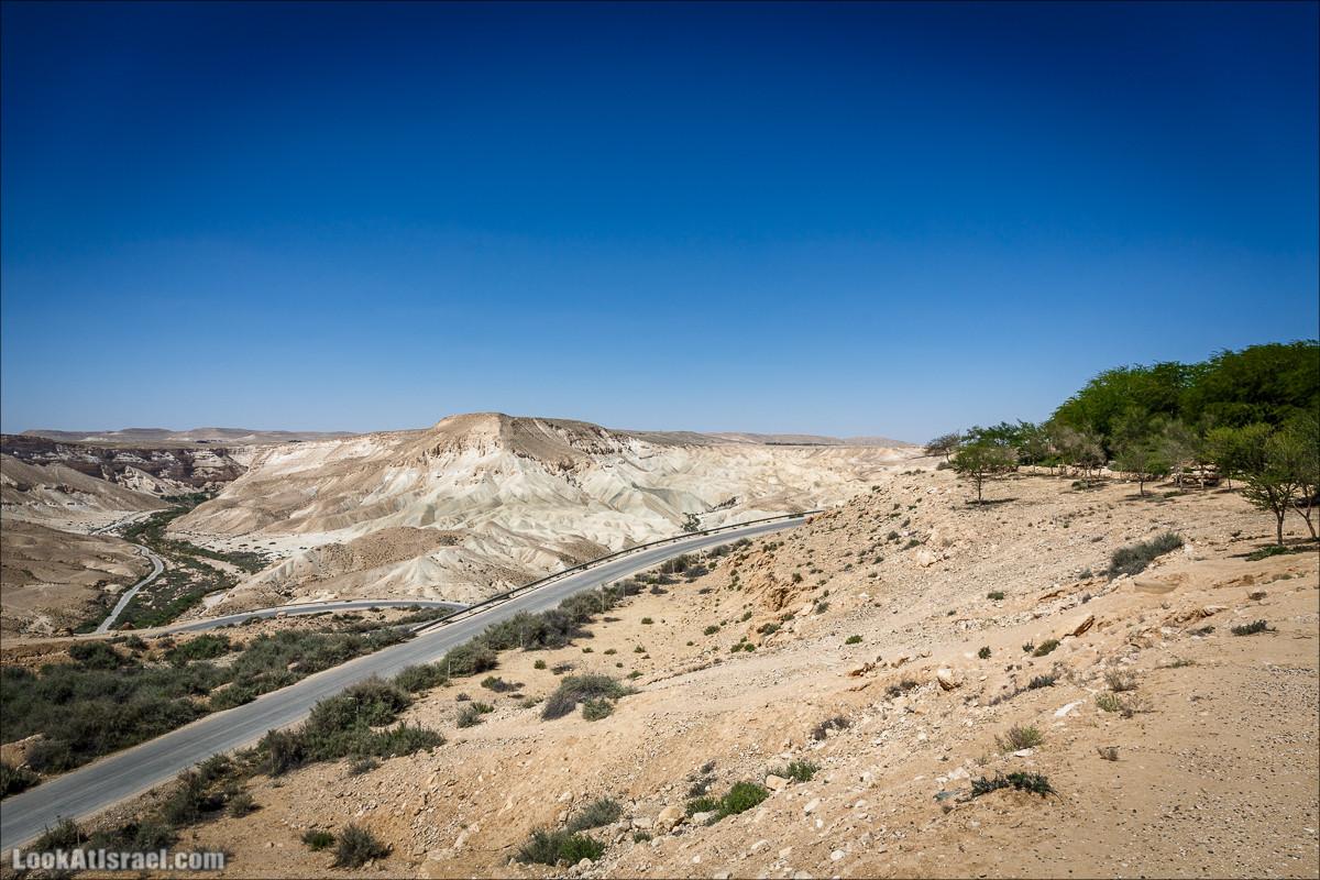Мидрешет Бен-Гурион, Могила | LookAtIsrael.com - Фото путешествия по Израилю