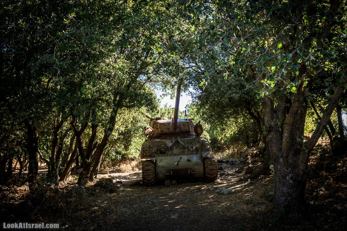 Интересные места Голанских высот: Мемориал Голани, гора Бенталь, Эйн Зиван, Жоба, Оз 77 и точка палеомагнетизма | LookAtIsrael.com - Фото путешествия по Израилю