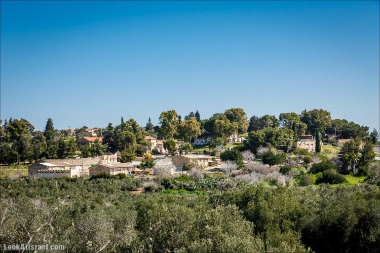 Субботники в Галилее | LookAtIsrael.com - Фото путешествия по Израилю