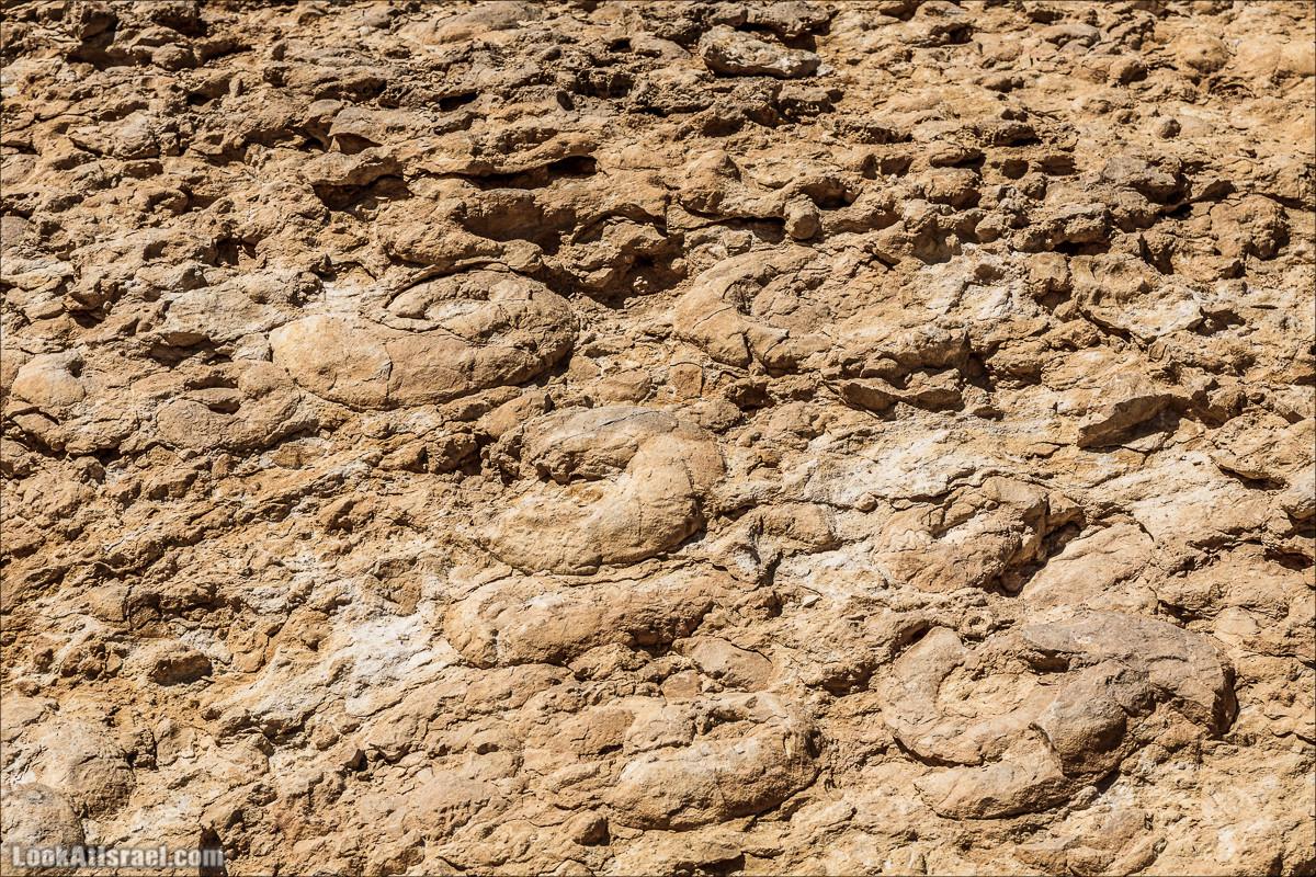 Махтеш Рамон, Махтеш Гадоль и Махтеш Катан   LookAtIsrael.com - Фото путешествия по Израилю