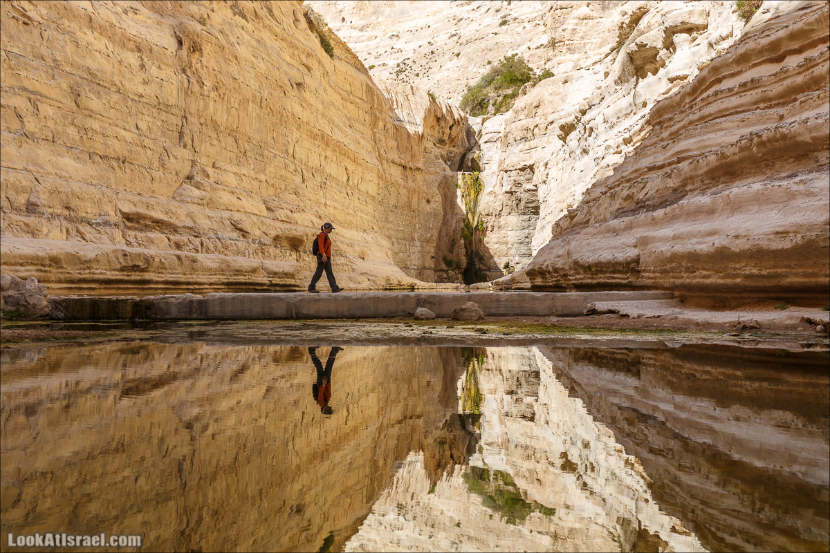 Эйн Авдат   LookAtIsrael.com - Фото путешествия по Израилю
