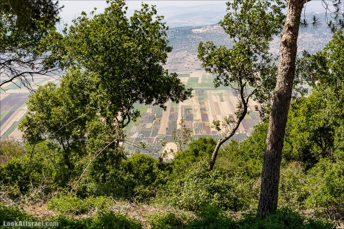 Пейзажная дорога на горе Тураан | LookAtIsrael.com - Фото путешествия по Израилю