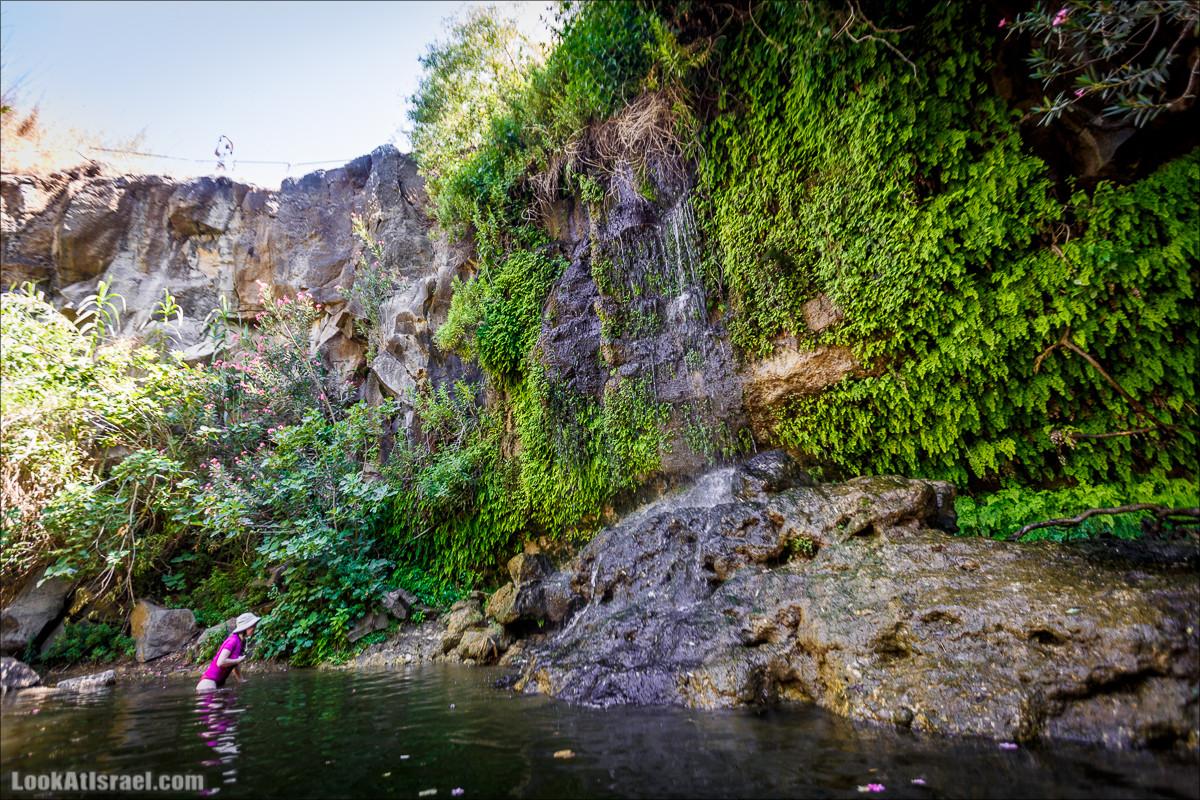 Водопады Голанских высот | LookAtIsrael.com - Фото путешествия по Израилю