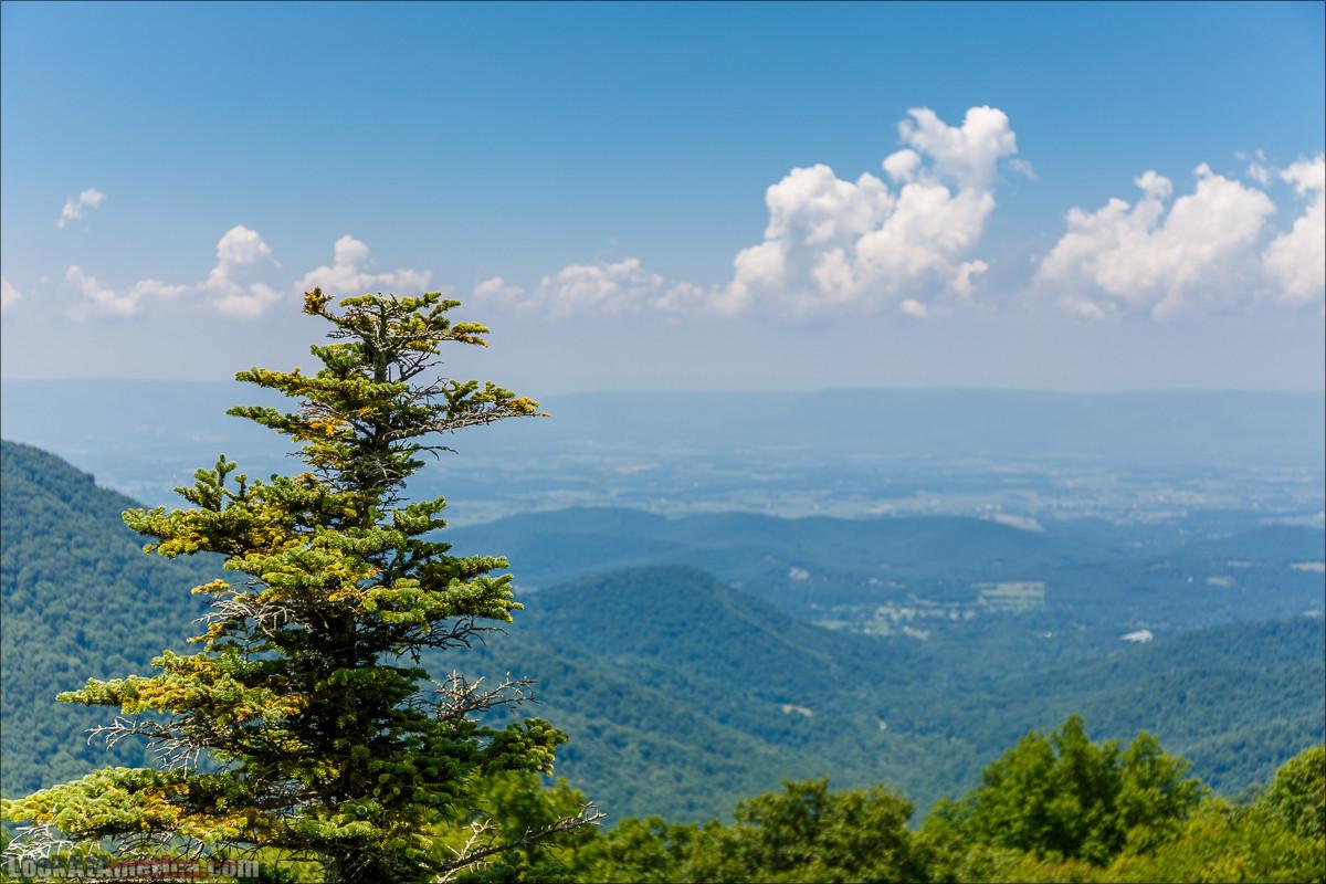 Национальный парк Шенандоа | Shenandoah national park | LookAtAmerica.com - Большое Американское путешествие LookAtIsrael.com