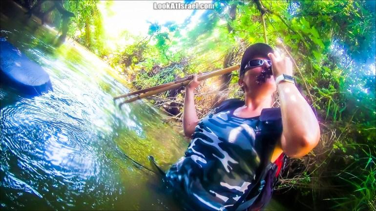 Поход по джунглям ручья Хермон (Баниас) | LookAtIsrael.com - Фото путешествия по Израилю
