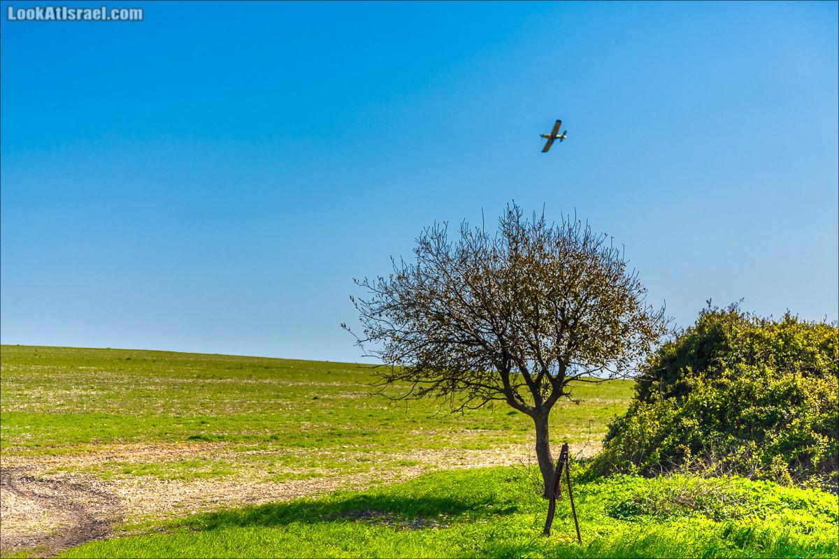 Рамот Менаше | LookAtIsrael.com - Фото путешествия по Израилю и не только...